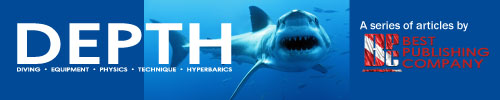Shark-Feature-banner