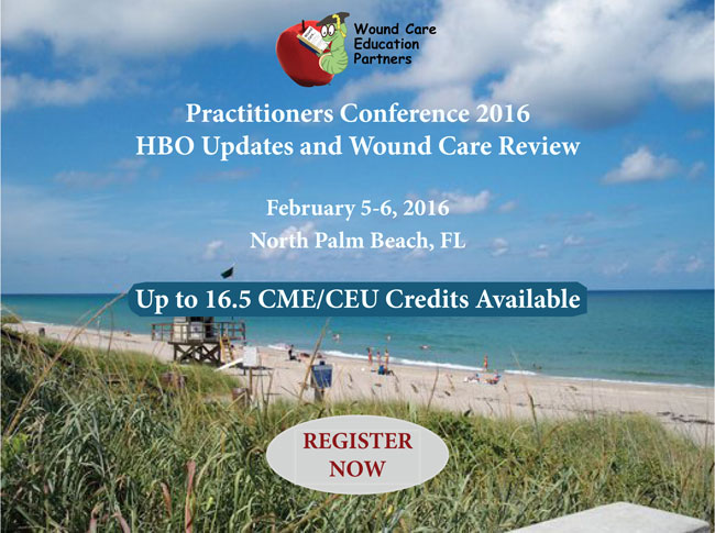 Practitioners Conference 2016 w