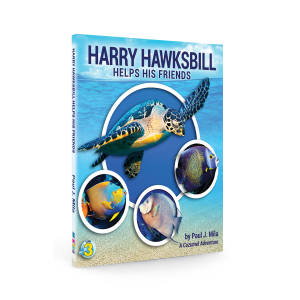 Harry Hawksbill Helps His Friends by Paul Mila