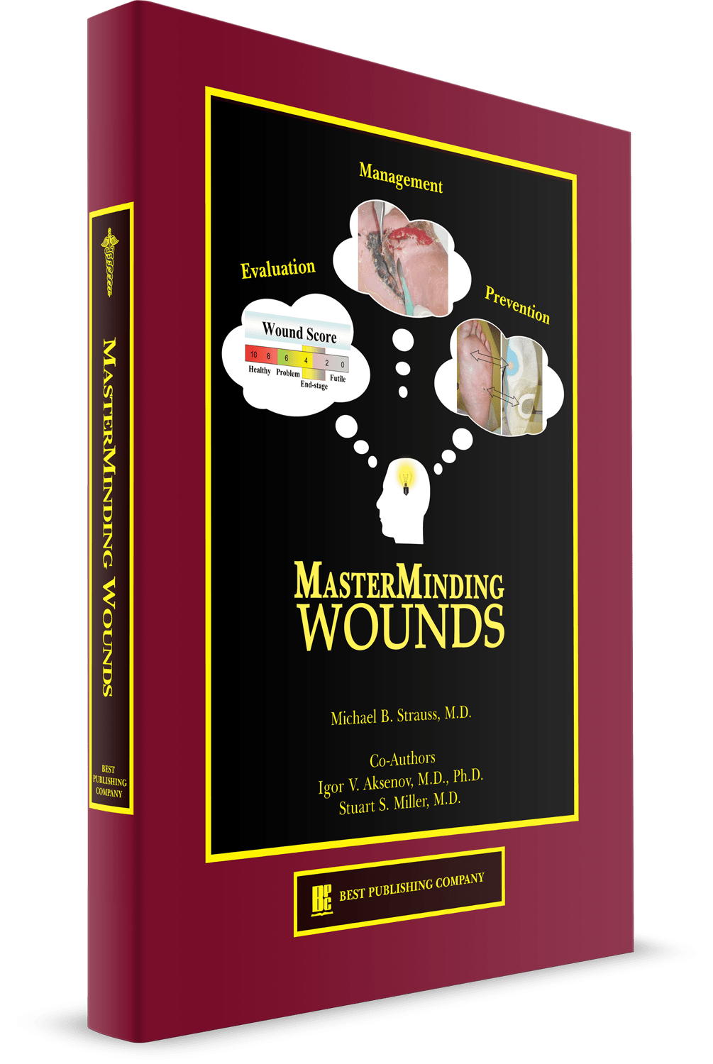 masterminding wounds 3D