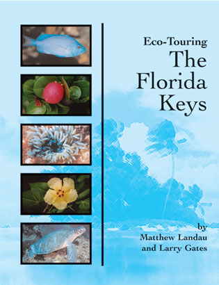 Eco-Touring-the-Florida-Keys
