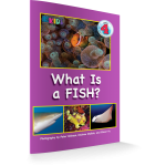 what-is-a-fish-revisesd-edition-3d-cover
