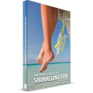 the-simple-guide-to-snorkeling-fun