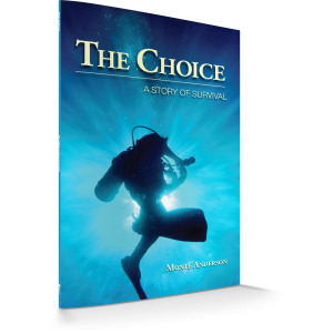 the_choice_-_3d_-_front